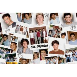Poster One Direction Polaroids