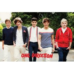 Poster One Direction Walking