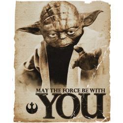 Mini poster Star Wars Yoda Force