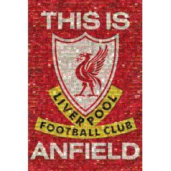 Maxi Poster Liverpool Mosaic