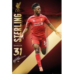 Maxi Poster Liverpool Sterling 14/15