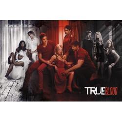 Poster True Blood Muestra tu Verdadero Color