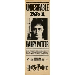 Poster Puerta Harry Potter Indeseable Nº1