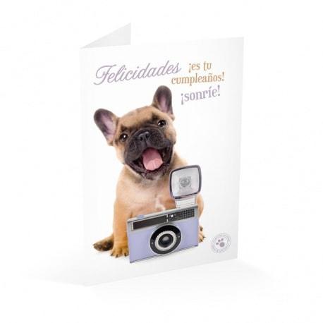 Tarjeta Felicitacion Studio Pets Felicidades es tu Cumpleaños Sonrie