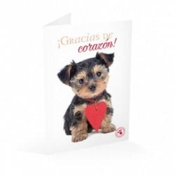 Tarjeta Felicitacion Studio Pets Gracias De Corazon