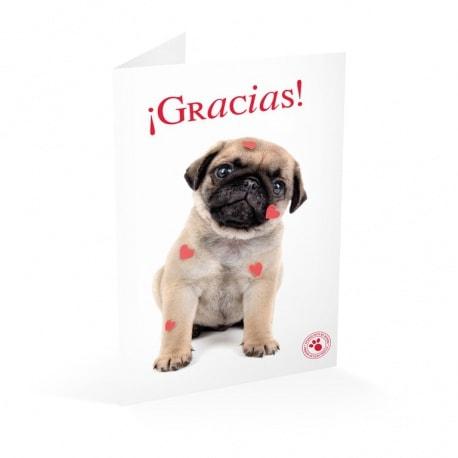 Tarjeta Felicitacion Studio Pets Gracias