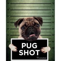 Mini Poster Rachael Hale (Pug Shot)