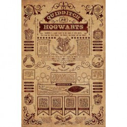 Poster Harry Potter (Quidditch en Hogwarts)