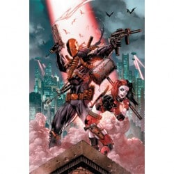 Poster Dc Comics Deathstroke & Harley Quinn