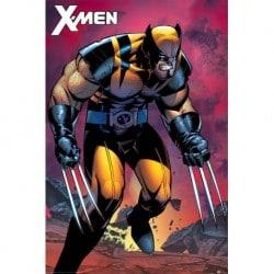 Poster X-Men (Wolverine Berserker Rage)
