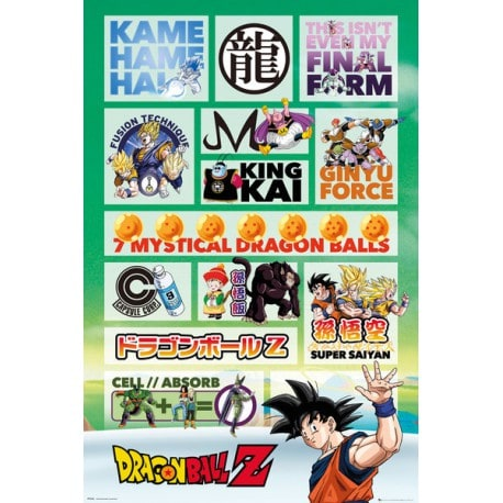 Poster Dragon Ball Z Infografia
