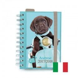 Agenda Escolar 2017/2018 Studio Pets Dog (en Italiano)
