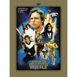 Lámina Star Wars 40 Aniversario Heroes