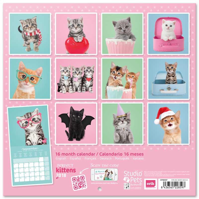 Calendario 2018 Studio Pets Gatos - Nosoloposters.com