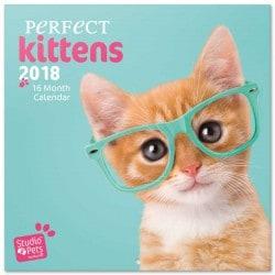 Calendario 2018 Studio Pets Gatos