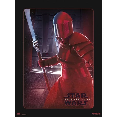 Lámina 30X40 Cm Star Wars Viii Elite Guard