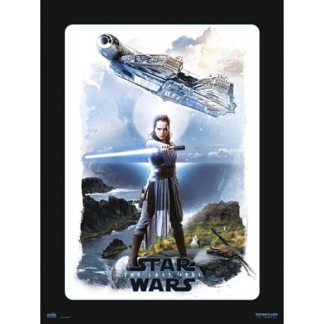 Lámina 30X40 Cm Star Wars Viii Rey
