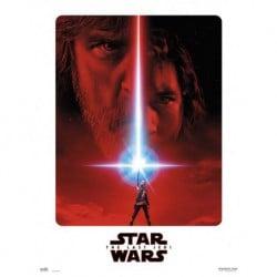 Lámina 30X40 Cm Star Wars Viii The Last Jedi