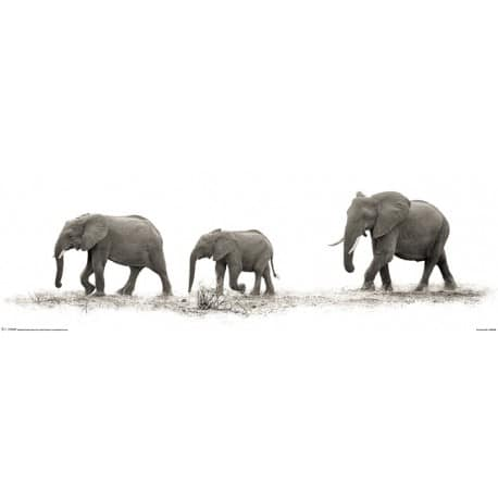 Poster Slim Mario Moreno The Elephants