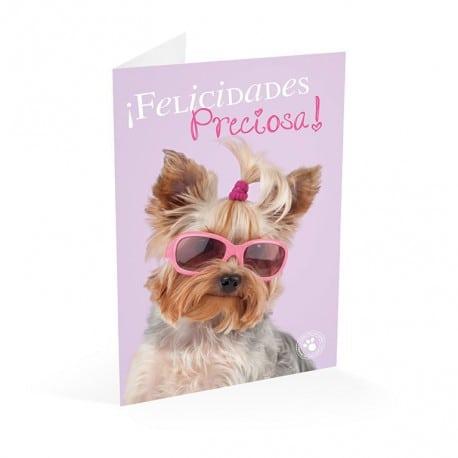 Tarjeta Felicitacion Studio Pets Yorkie Felicidades Preciosa