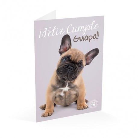 Tarjeta Felicitacion Studio Pets Perro Feliz Cumple Guapa