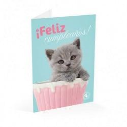 Tarjeta Felicitacion Studio Pets Gato Feliz Cumpleaños