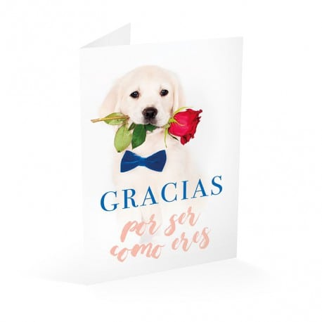 Tarjeta Felicitacion Perro Rosa Gracias Por Ser Como Eres