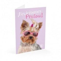 Tarjeta Felicitacion A4 Studio Pets Perro Felicidades Preciosa