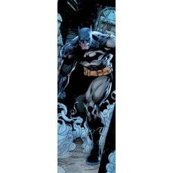 Poster Puerta Dc Comics Batman Prowl