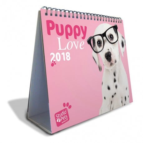 Calendario Sobremesa Deluxe 2018 Studio Pets Dogs