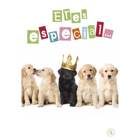 Tarjeta Felicitacion A4 Eres Especial... Felicidades!!