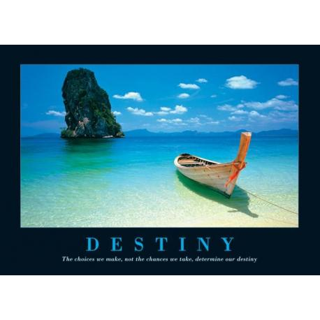 Poster Destiny