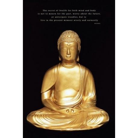 Poster Budda