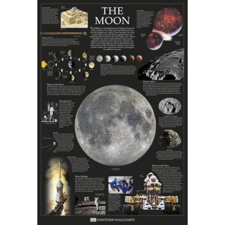 Poster The Moon