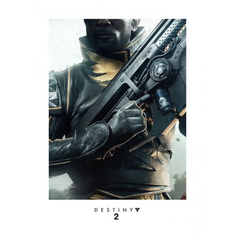 Art Print 30X40 Destiny 2 Warlock