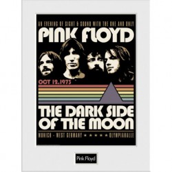 Art Print 30X40 Pink Floyd An Evening With