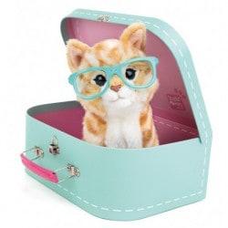 Peluche Studio Pets Cat Rayben