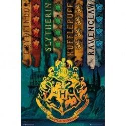 Poster Harry Potter Banderas