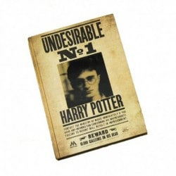 Cuaderno 3D Lenticular Harry Potter