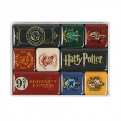 Set Imanes Harry Potter