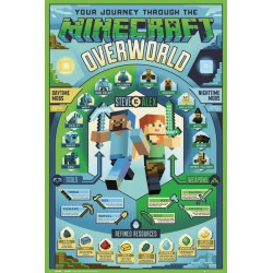 Poster Minecraft Overworld Biome