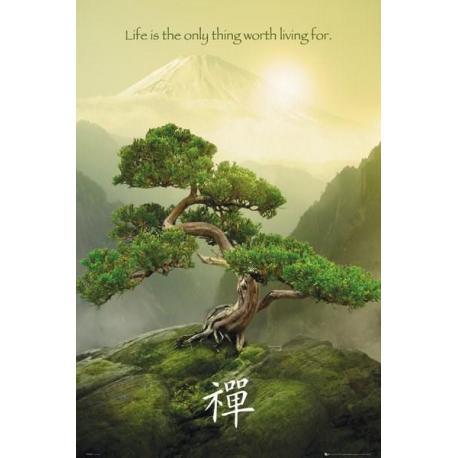 Poster Zen Mountain