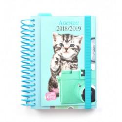 Agenda Escolar 18/19 Dia Pagina Espiral Español Studio Pets Cat