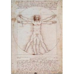 Puzzle 1000 Piezas Da Vinci