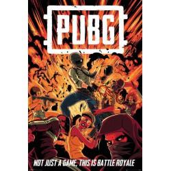 Poster Pubg Boom