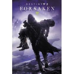 Poster Gamer Destiny 2 Forsaken