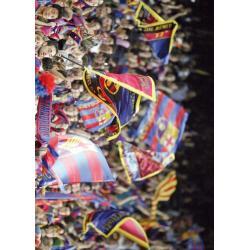 Postal F.C. Barcelona Banderas