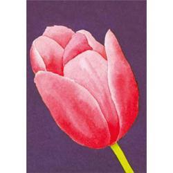 Puzzle 1000 Piezas Luffarelli: Tulipano