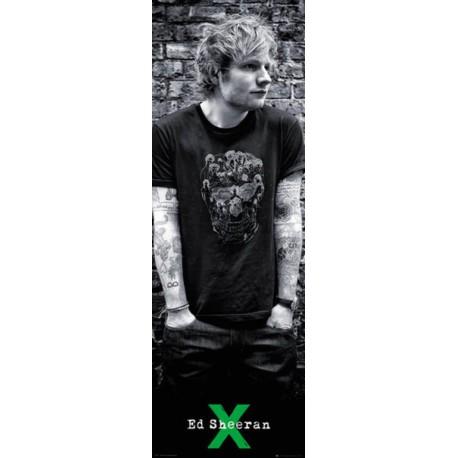 Poster Puerta Ed Sheeran Skull