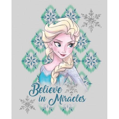 Canvas 20X25 Cm Disney Frozen Elsa
